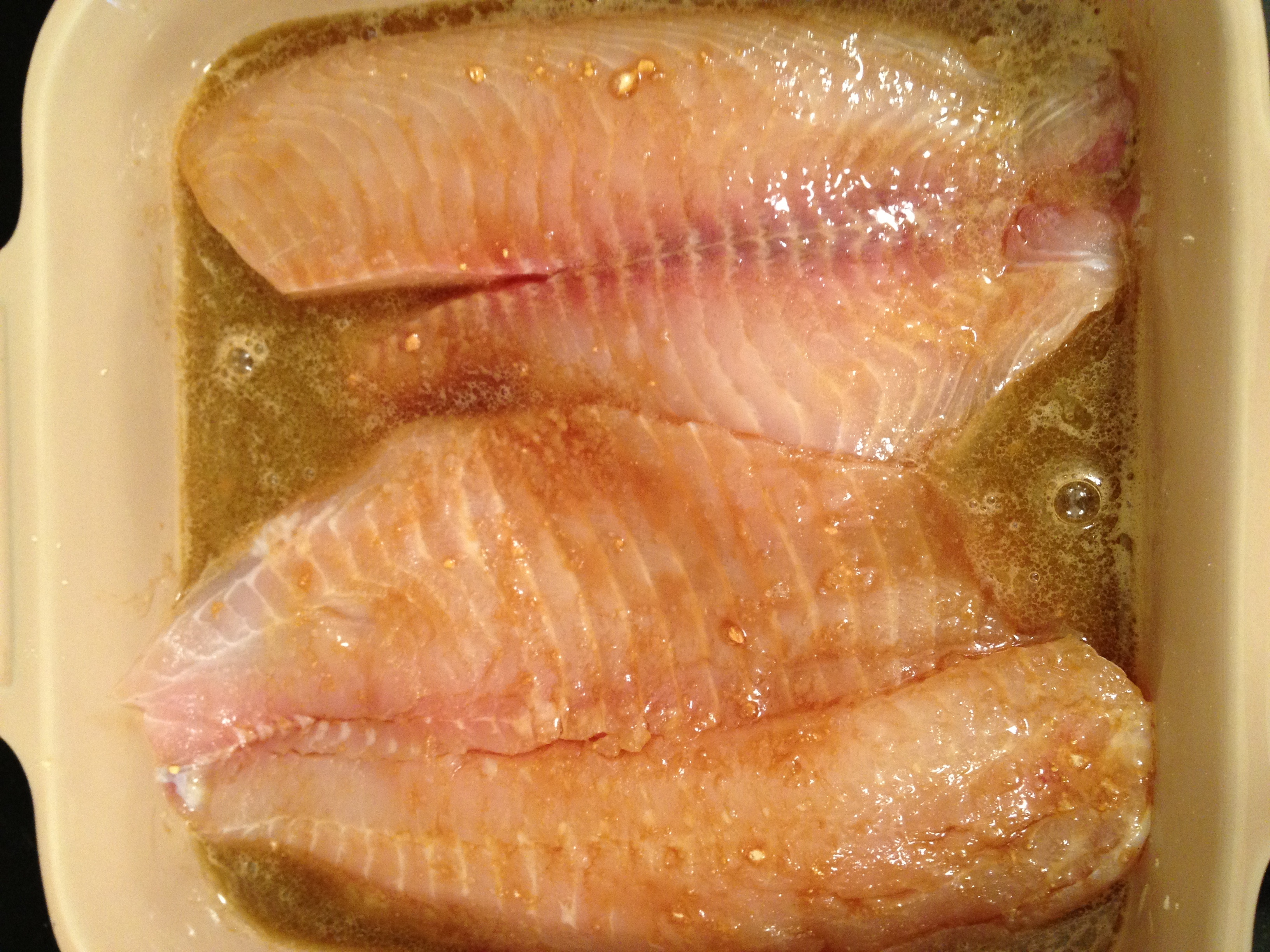 Broiled tilapia fillets my judy the foodie for What is tilapia fish