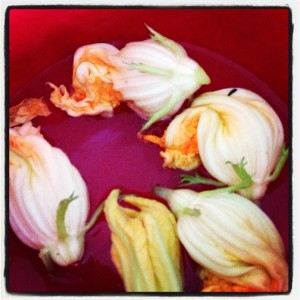 Stuffed Zucchini Blossoms with Herbed Ricotta