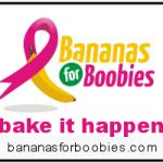 Bake it Happen for Breast Cancer