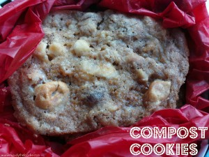 Holiday Compost Cookies