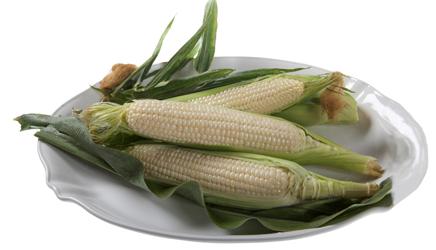 amaize corn