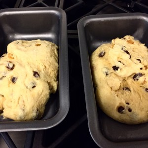Raisin Bread for Beginners